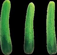 cucumber png free download 24