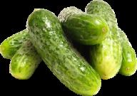cucumber png free download 29