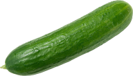cucumber png free download 3