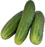 cucumber png free download 6