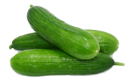 cucumber png free download 7
