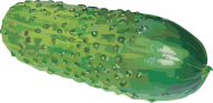 cucumber png free download 8