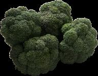 dark green broccoil free png download
