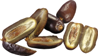 dates png free download 1