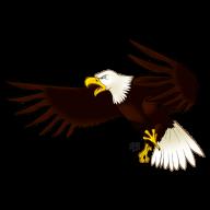 eagel png free download 4