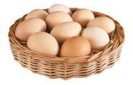 egg png free download 15