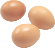 egg png free download 27