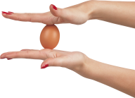 egg png free download 30