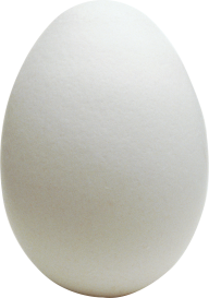 egg png free download 7