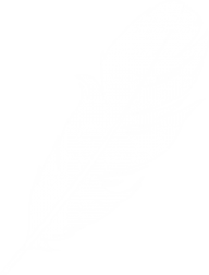 Feather clipart logo image download
