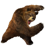 Ferocious Png Bear Free Download