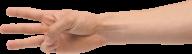 Finger Free PNG Image Download 27