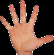 Finger Free PNG Image Download 9