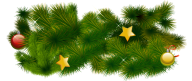 Fir Tree Free PNG Image Download 12