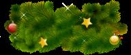 Fir Tree Free PNG Image Download 12