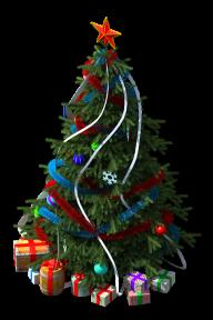 Fir Tree Free PNG Image Download 18