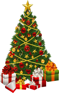 Fir Tree Free PNG Image Download 3