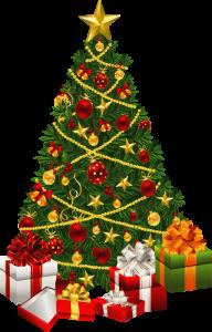Fir Tree Free PNG Image Download 3