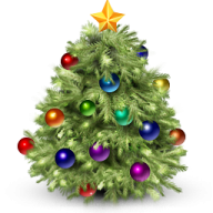 Fir Tree Free PNG Image Download 4