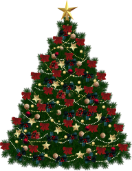 Fir Tree Free PNG Image Download 9