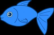 Fish Free PNG Image Download 26