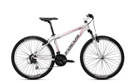 focus bicycle free png image download