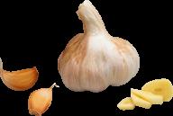 Garlic Free PNG Image Download 10