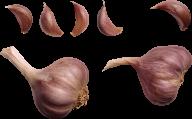 Garlic Free PNG Image Download 12