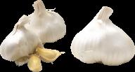 Garlic Free PNG Image Download 13