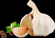 Garlic Free PNG Image Download 14