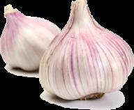 Garlic Free PNG Image Download 15