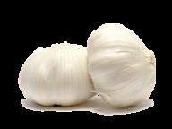 Garlic Free PNG Image Download 18