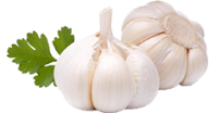 Garlic Free PNG Image Download 23