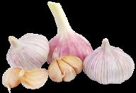 Garlic Free PNG Image Download 24
