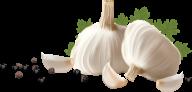Garlic Free PNG Image Download 27