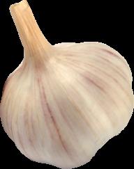 Garlic Free PNG Image Download 4