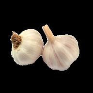 Garlic Free PNG Image Download 6