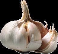Garlic Free PNG Image Download 9