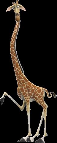 Giraffe Free PNG Image Download 15