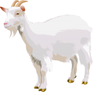 Goat Free PNG Image Download 6