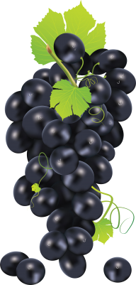 Grape Free PNG Image Download 11