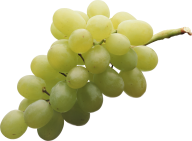 Grape Free PNG Image Download 22