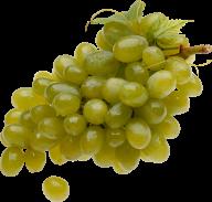 Grape Free PNG Image Download 27
