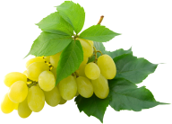 Grape Free PNG Image Download 4