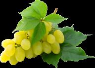 Grape Free PNG Image Download 4