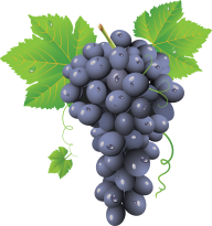Grape Free PNG Image Download 6