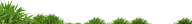 Grass Free PNG Image Download 10