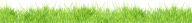 Grass Free PNG Image Download 18