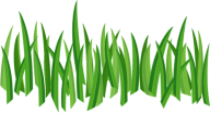 Grass Free PNG Image Download 21
