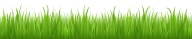 Grass Free PNG Image Download 23